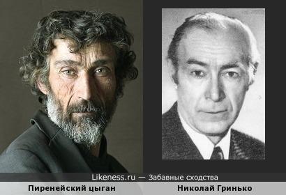 Пиренейский цыган напомнил актера
