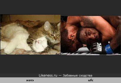 захват котэ похож на захват в ufc