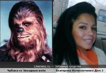 Екатерина Колесниченко похожа на Чубаку