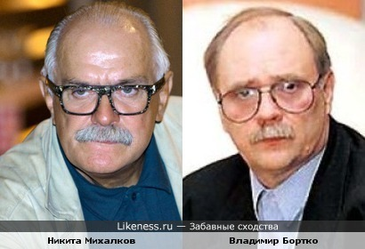 Никита Михалков похож на Владимира бортко