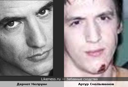 Дермот Мелруни и Артур Смольянинов похожи