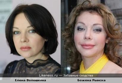 Елена Волошкина и Божена Рынска похожи