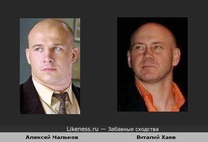 Алексей Мальков и Виталий Хаев похожи