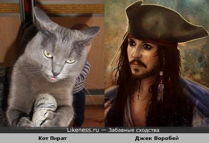 Пират Джек Воробей в исполнении Джонни Деппа (Johnny Depp) похож на кота Пирата.
