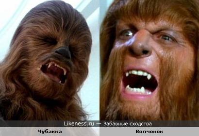 Чуи и Полторашка :)