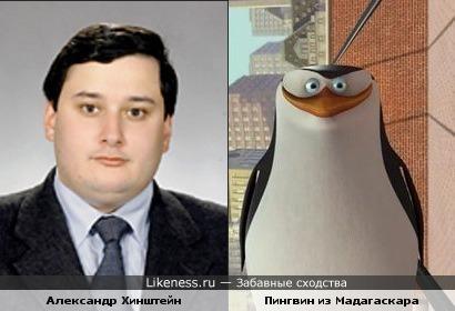 Хинштейн похож на пингвина из Мадагаскара