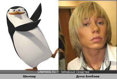 Шкипер похож на Диму Бикбаева