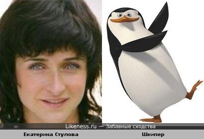 """Шкипер (м/ф """"Пингвины из Малагаскара) похож на Екатерину Стулову"""
