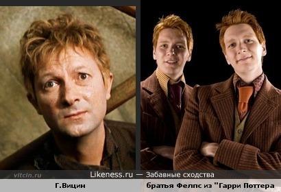 Георгий Вицин похож на братьев Фелпс