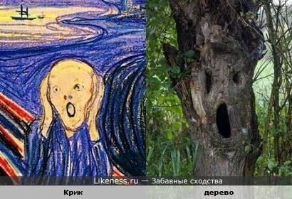 "Дерево похоже на картину ""Крик"""