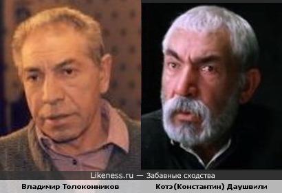 Владимир Толоконников похож на Котэ Даушвили