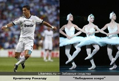 Танцы белых лебедей