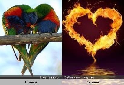 Любовь разжигает огонь желания!