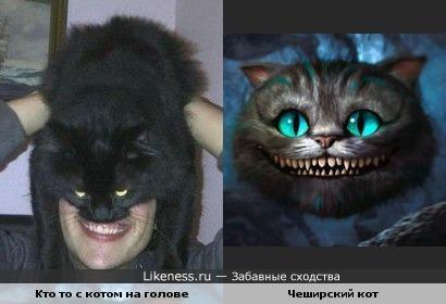чеширский кот похож кого то с котом на голове
