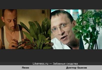 Любители растений)
