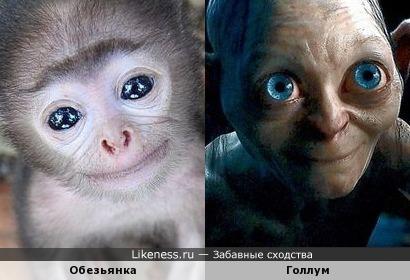 Обезьянка похожа на Голлума))