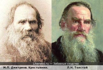 Крестьянин и Л.Н. Толстой
