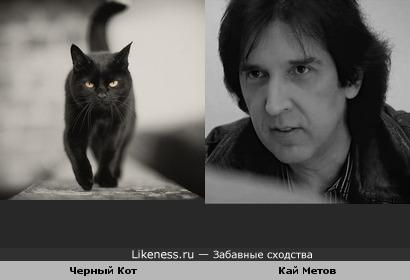 Кай Метов похож на Черного Кота