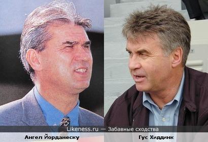 Румынский футбольный тренер напомнил Гуса Хиддинка