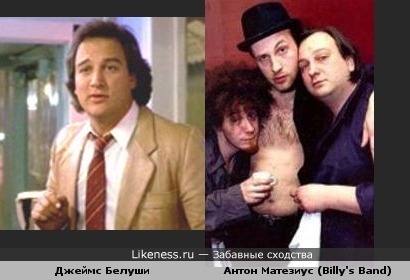 Баянист Billy's Band Антон Матезиус похож на Джеймса Белуши