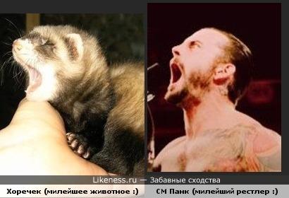 Зевают )
