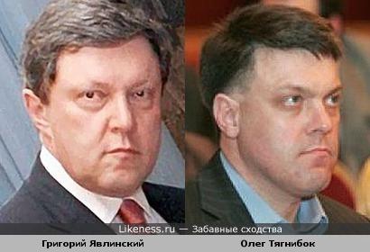 Григорий Явлинский и Олег Тягнибок