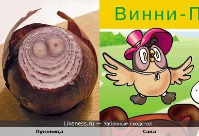 Показалось, что луковица похожа на Саву