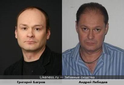Григорий Багров и Андрей Лебедев похожи