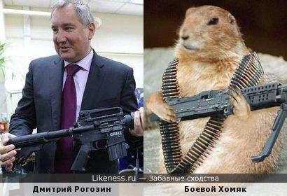 Дмитрий Рогозин похож на Боевого Хомяка