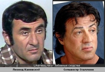 Леонид Каневский похож на Сильвестра Сталлоне
