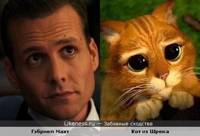 Временами Гэбриел Махт напоминает кота из Шрека :-)