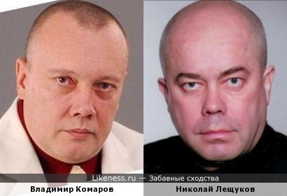 Владимир Комаров и Николай Лещуков похожи