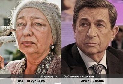 Эва Шикульска похожа на Игоря Квашу