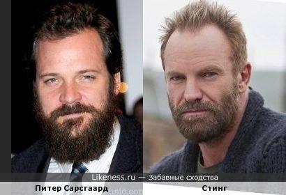 Питер Сарсгаард похож на Стинга, особенно с бородой