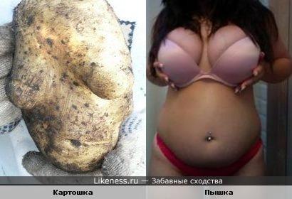 Картошка похожа на тело толстушки