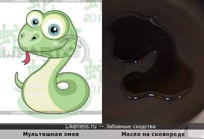Масло на сковороде напомнило мультяшную змею