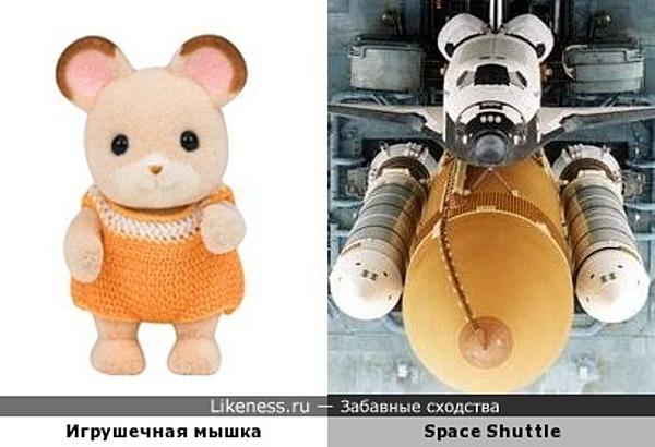 История полёта одной мыши на орбиту Земли