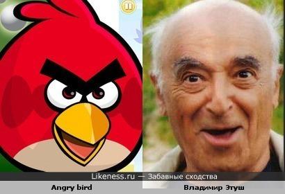 Этуш vs Angry Birds