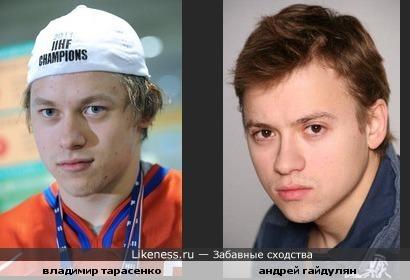 владимир тарасенко похож на андрея гайдуляна