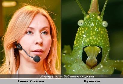 Елена Усанова и кузнечик