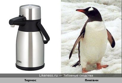 Термос с носиком похож на пингвина