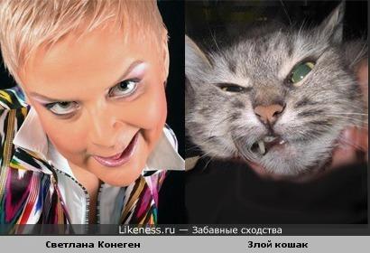 Светлана Конеген и злой кошак ))