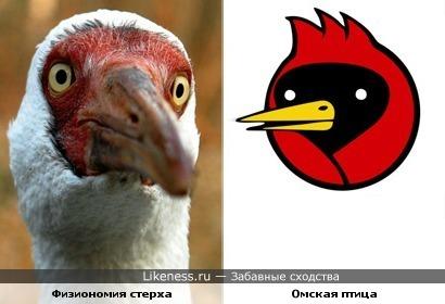 Голова стерха напомнила Омскую птицу