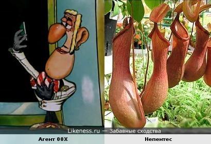 Агент 00X похож на хищное растение
