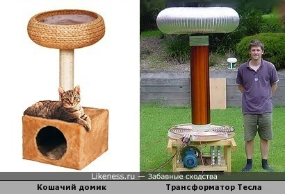 Кошачий домик похож на трансформатор Тесла