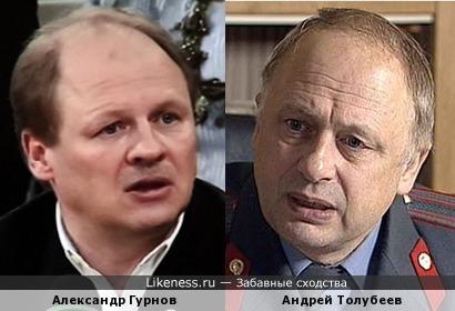 Александр Гурнов и Андрей Толубеев