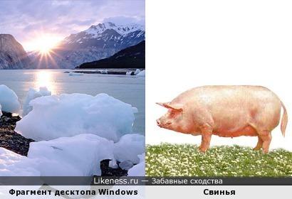 Ледяная «свинья» в стандартных обоях Windows 7