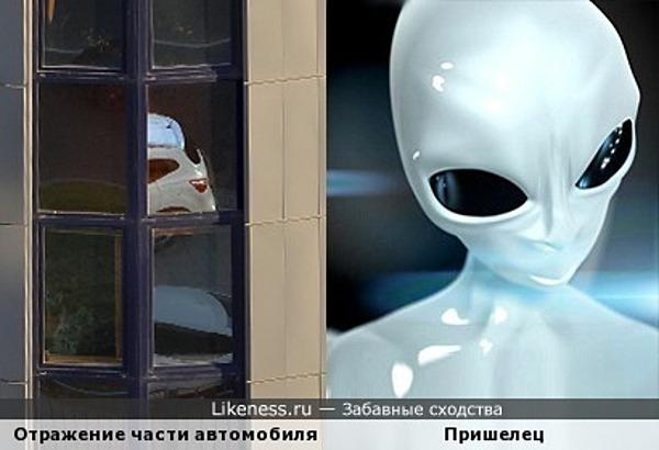 Отражение задницы автомобиля в окне бизнес-центра поглядело на меня пришельцем с усмешкой на устах...