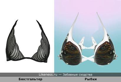 Бюстгальтер напоминает рыбок