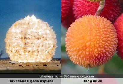 Фаза взрыва на стоп-кадре напоминает плод личи